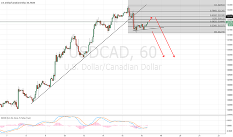 USDCAD: Still in correction