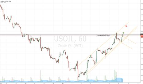 USOIL: Oil Bull Market