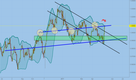 USDCHF: The bull has been injured