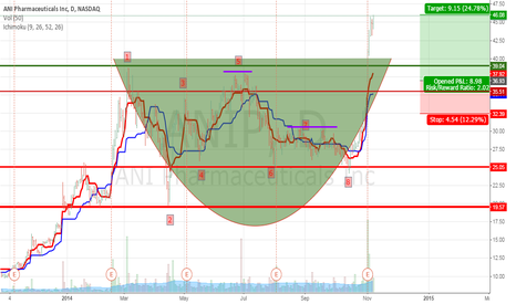 ANIP: BUYING ON A PULLBACK