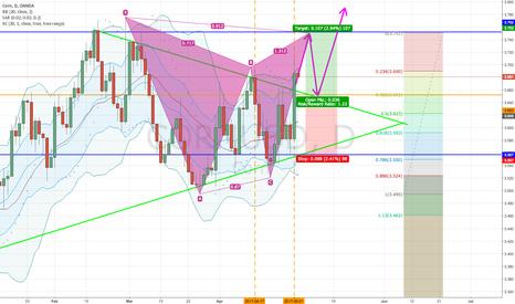 CORNUSD: Corn symmetrical triangle upside break
