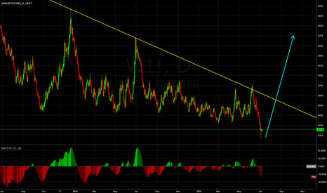 W1!: Wheat at Monthly Low. Looking to Long on D1 TimeFrame.