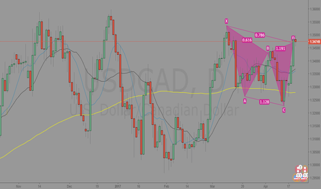 USDCAD: USDCAD Cypher Pattern Complete