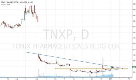TNXP: Gin and Tonix