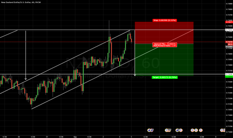 NZDUSD: Just my opinion of direction