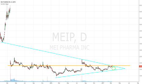 MEIP: Meep MEIP