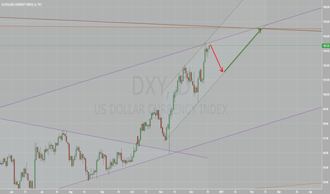 DXY: US Dollar is down towards year end, then up 104.5 by mid-Feb