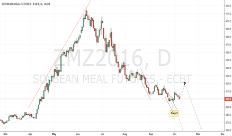 ZMZ2016: CBoT soyameal remains a short play