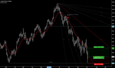 CLZ2014: CRUDE OIL WTI rebounding
