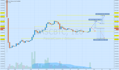 PASCBTC: Trying to rich a new high..