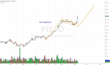 PII: $PII Bull Flag Entry