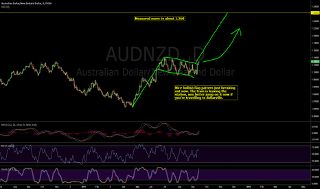 AUDNZD: Bullish flag breaking out.