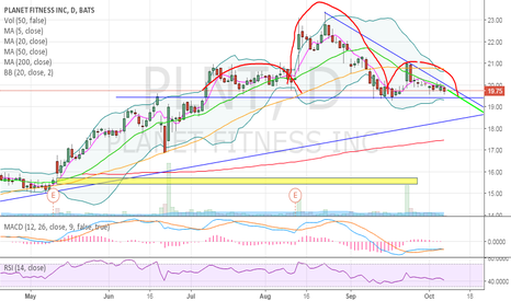 PLNT: PLNT Head and Shoulders