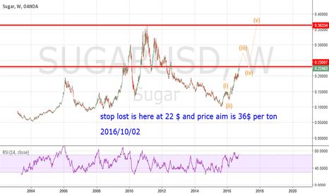 SUGARUSD: sugar in decision point