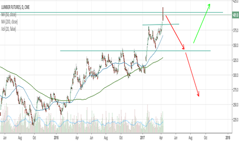 LS1!: Double Top Formation in Lumber Futures