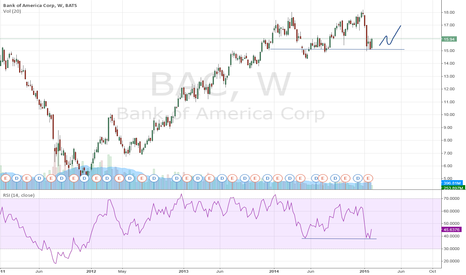 BAC: Bank of America Corp: will the support level hold?