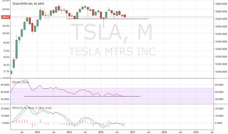 TSLA: Tesla short