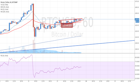 BTCUSD: Rising Wedge