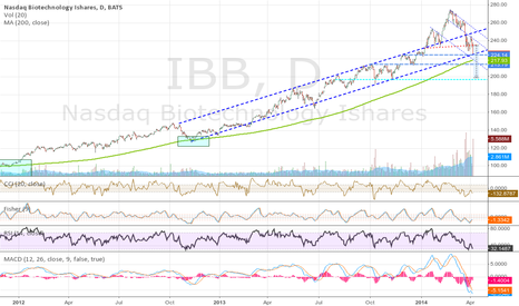 IBB: IBB support is setting up