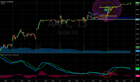 AAPL: Post AAPL Results- of Breakout