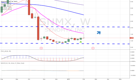 SNMX: I believe SNMX is a buy for the week