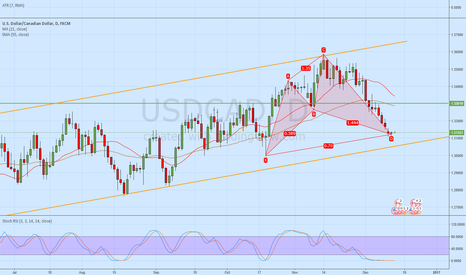 USDCAD: USDCAD D  BULL CYPHER just completed