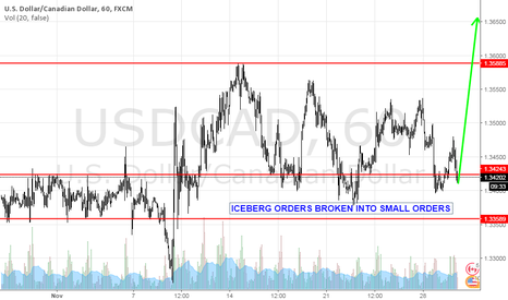 USDCAD: Last assault to 1.36.Iceberg orders are done !
