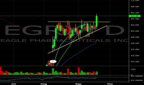 EGRX: EGRX flag break, looking for a follow through higher
