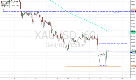 XAUUSD: Confirmed Double Bottom and Bull Flag in development