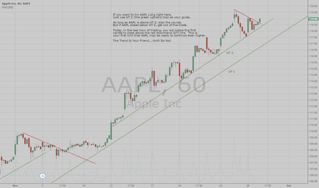 AAPL: Is AAPL Ready To Continue Higher?