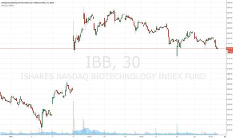 IBB: IBB 30 day