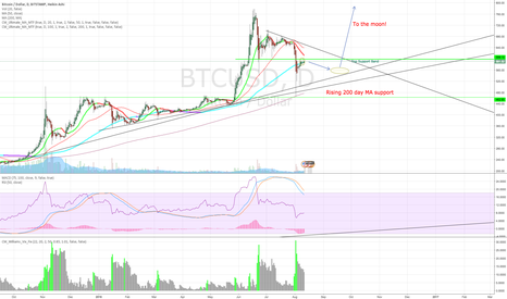 BTCUSD: BTC Next Intermediate Bounce
