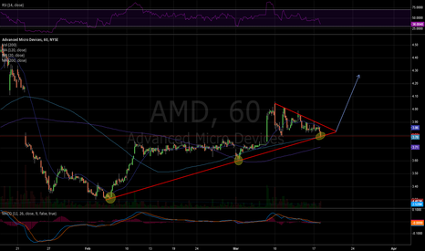 AMD: Support line