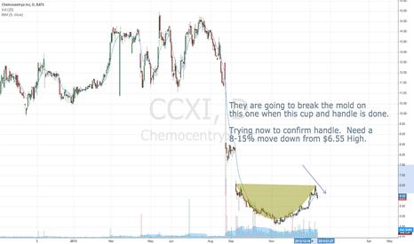 CCXI: Classic Cup & Handle - $CCXI