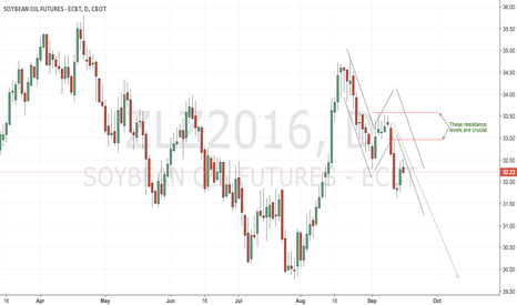 ZLZ2016: CBoT beanoil remains a short play