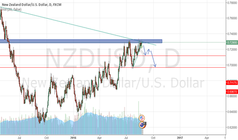 NZDUSD: NZDUSD bearish move expected!