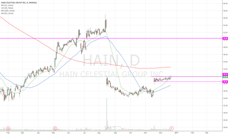 HAIN: flagging, huge gap to fill