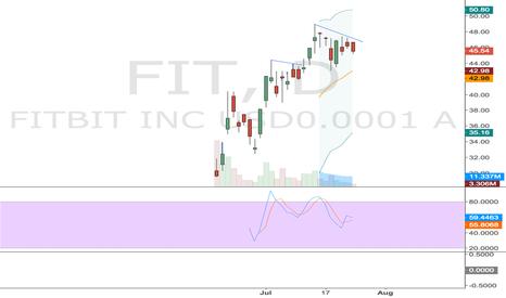 FIT: FIT Flag