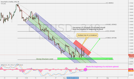EURUSD: Will US economy fail? EUR/USD 14/8/14