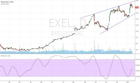 EXEL: EXEL