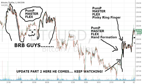 BTCUSD: Update on Pump Master Flex... So far so good