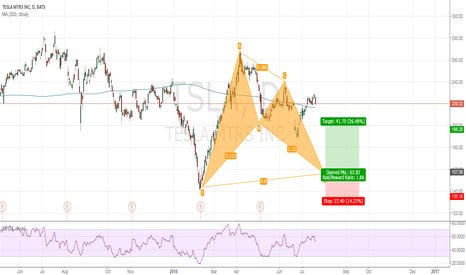 TSLA: TESLA long opp by harmonic pattern