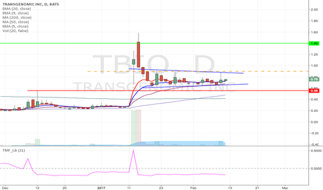 TBIO: TBIO - Pennant breakout Long from $0.90 to $1.40