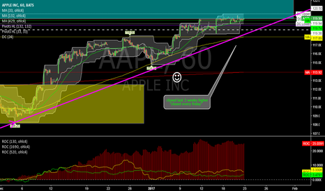AAPL: AAPL @ 1h @ this week back into new terrotirity above 120USD ?