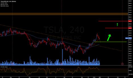 TSLA: TSLA IDEA