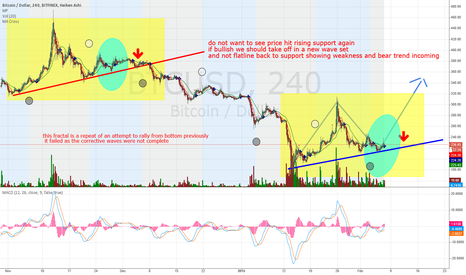 BTCUSD: All comes down to this