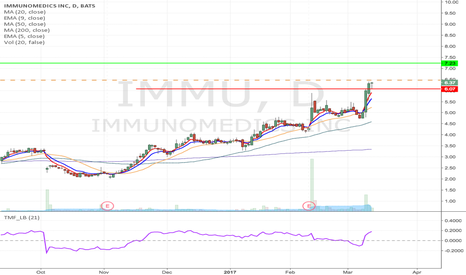 IMMU: IMMU - Flag formation Long from $6.47 to $7.23