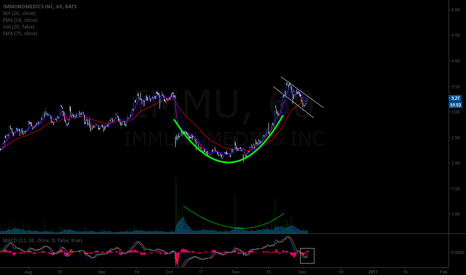 IMMU: IMMU  cup and handle pattern formation