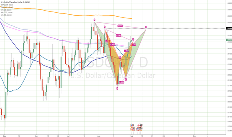 USDCAD: I will prefer to trade green one instead of yellow