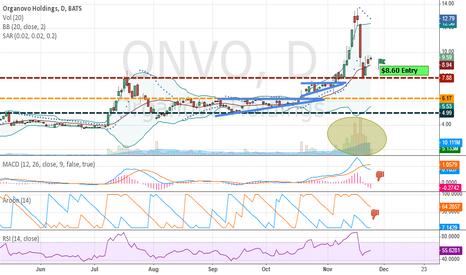 ONVO: ONVO - up, down, sideways?